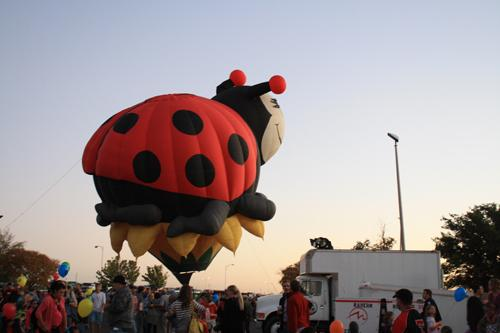 The Ladybug hot air balloon. Photo by Danie Fierro.