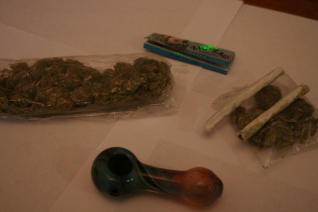 Marijuana used to train drug dogs. Photo by Courtney inman