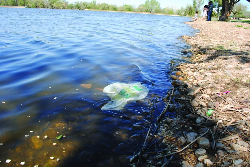 Thompson park littered with trash from lake. Photo by Lisa Hellier.